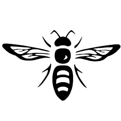 Bee_site_icon.png